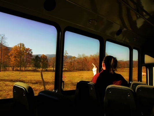 Woman point out window on a cades Cove tour bus